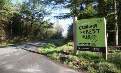 Gisburn Forest Hub